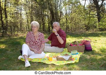 bájos, piknik