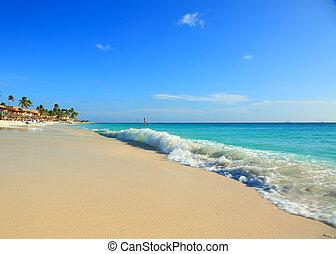 bámulatos, szépség, türkiz, karib-tenger, white homok, tengerpart., aruba, island.