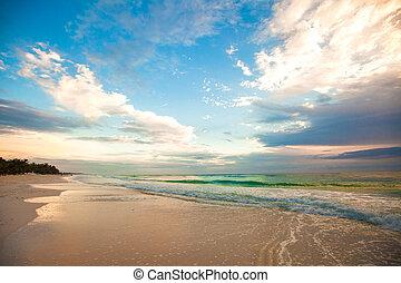 bámulatos, színes, napnyugta, képben látható, a, tropical tengerpart, alatt, mexikó