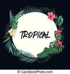 básico, tropicais, papel, fundo, rgb, redondo, floresta