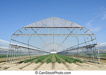 bâtiment agricole, pour, agriculture