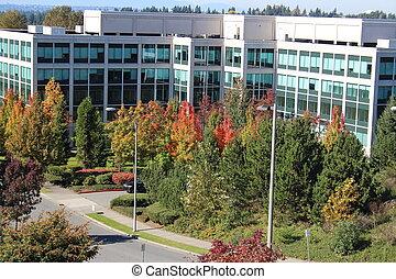bâtiment, automne, bureau