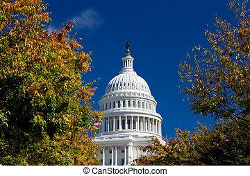 bâtiment, automne, dc, polarisé, capitole, washington, encadré, filtre, feuillage
