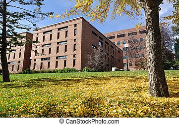 bâtiment, brique, campus université