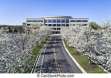 bâtiment bureau, à, fleurir, arbres