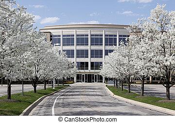 bâtiment bureau, dans, printemps