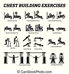 bâtiment, figure, pictograms., poitrine, crosse, exercices, muscle