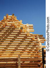 bâtiment, nouveau, loghouse