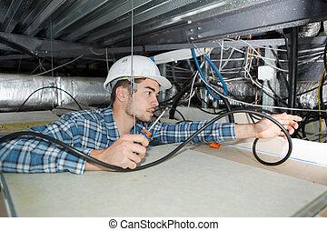 bâtiment, plafond, électricien, câblage, tournevis, mâle