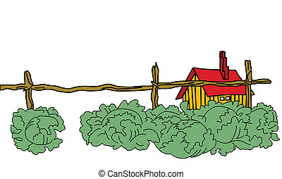 bâtiment, rural, chou, vecteur, vert