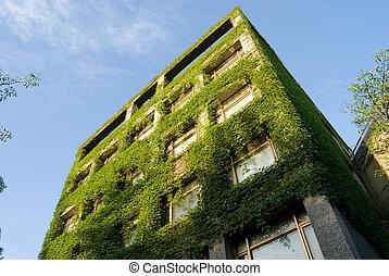 bâtiment, vert