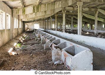 bâtiment, vieux, abandonnés, intérieur, grange, vue