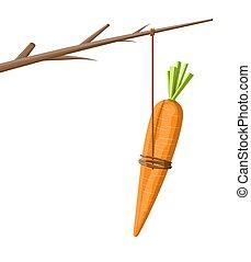 bâton carotte