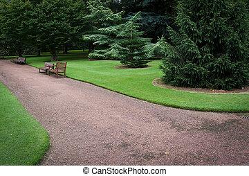 bänk, in, grönt parkera, med, träd