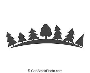 bäume, in, wald