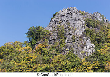 bäume, landschaftsbild, kalkstein, berge