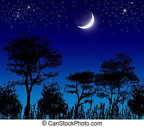 bäume, mond, und, stars.