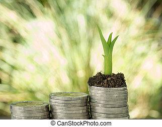 bäume, wachsen, auf, a, haufen , von, coin.