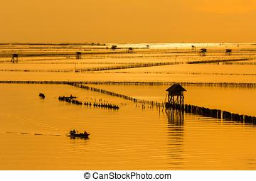 båd, på, sø, hos, solnedgang