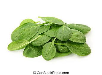 bébé, épinards, feuilles