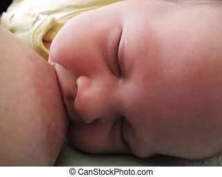 bébé, allaitement sein