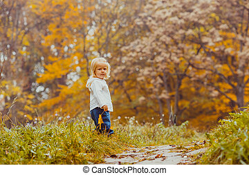 bébé, automne, parc