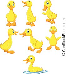 bébé, canard, collection, dessin animé, ensemble