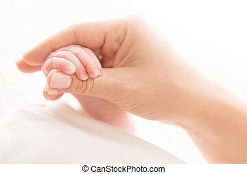 bébé, concept, aide, maman, main, nouveau né, né, tenue, blanc, mère, nouveau, prise, gosse