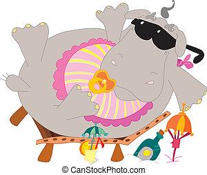 bébé, hippopotame