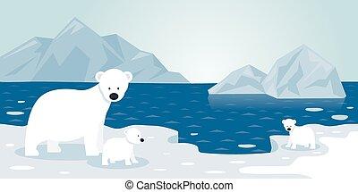 bébé, iceberg arctique, ours, mère, polaire, scène