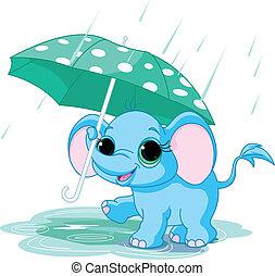 bébé, mignon, éléphant, parapluie, sous
