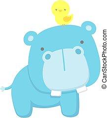 bébé, mignon, hippopotame