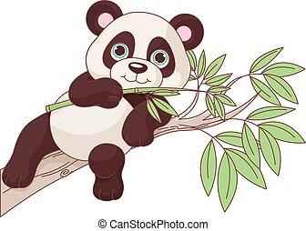 bébé, panda