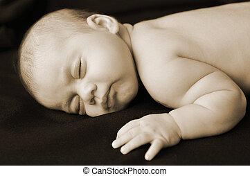 bébé, parenting, -, grossesse, concept, photo