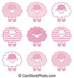 bébé, pastel, rose, patchwork, agneaux