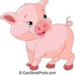 bébé, peu, cochon