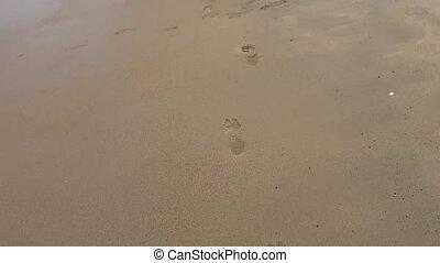 bébé, plage, barefoot., étapes
