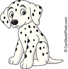 bébé, race, dalmatien, chien