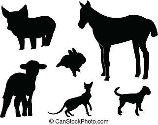 bébé, silhouettes, animaux