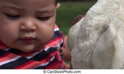 bébé, teddy, peluche, ours, nourrisson