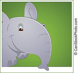 bébé, vecteur, éléphant