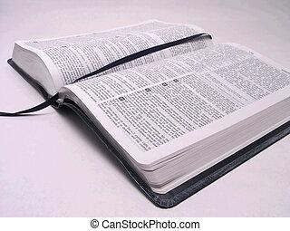 bíblia aberta, livro, 1