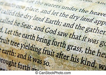 bíblia, cima