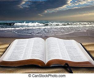 bíblia, em, praia