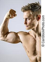 bíceps, músculo, homem jovem