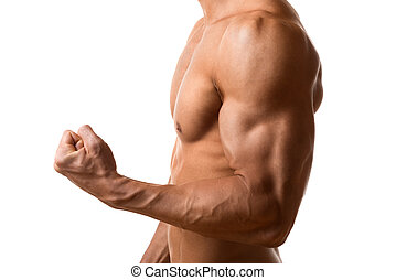 bíceps, músculo, jovem, homem