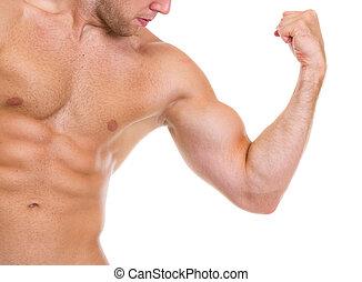 bíceps, músculos, abdominal, actuación, muscular, primer plano, hombre