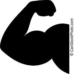 bíceps, vetorial, ícone