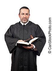 bíró, birtok, a, árverezői kalapács, és, könyv