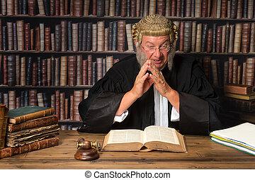bíró, noha, törvény beír
